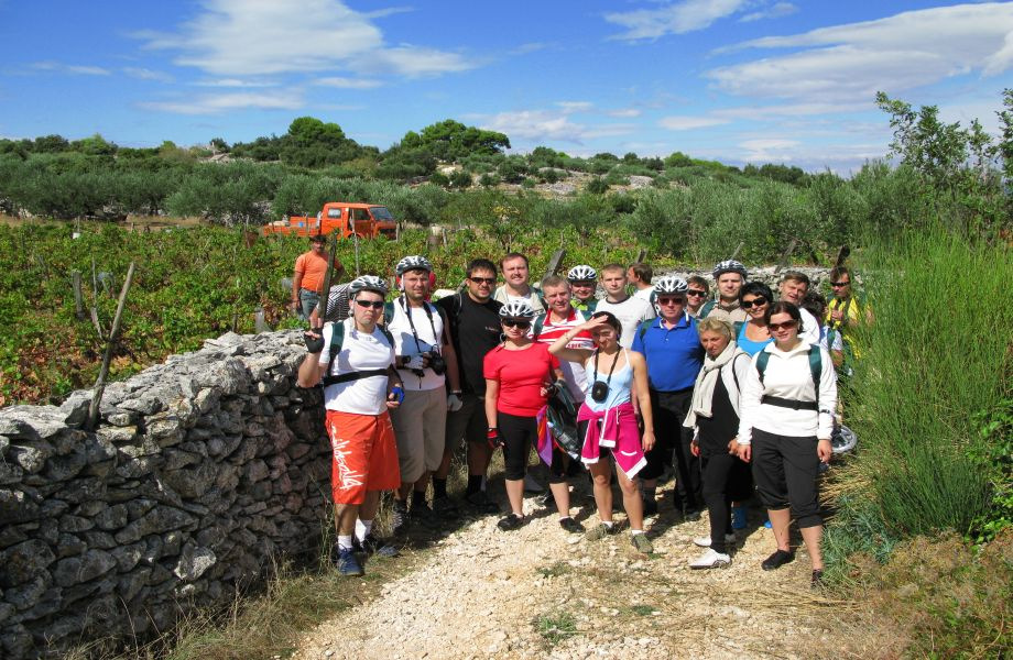 Incentive travels and Team Buildings with Maestral Travel Agency