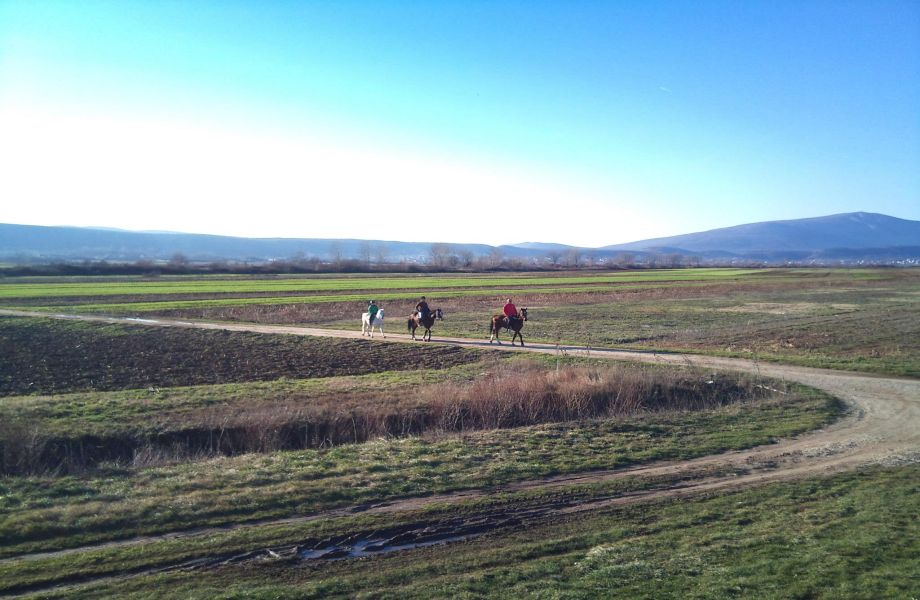 Horseback 8 days Horseback Tour in Cetina Region with Maestral Travel Agency