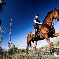 Horseback riding in Cetina Region with Maestral Travel Agency