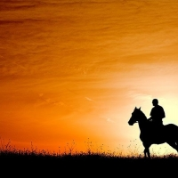 Horseback 8 days Horseback Tour in Cetina Region with Maestral Travel Agency